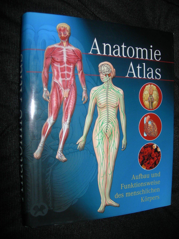 Anatomie-Atlas / Anatomieatlas - Aufbau und Funktionsweise des ...