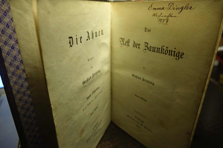 Das Nest Der Zaunkonige Gustav Freytag Buch Antiquarisch Kaufen