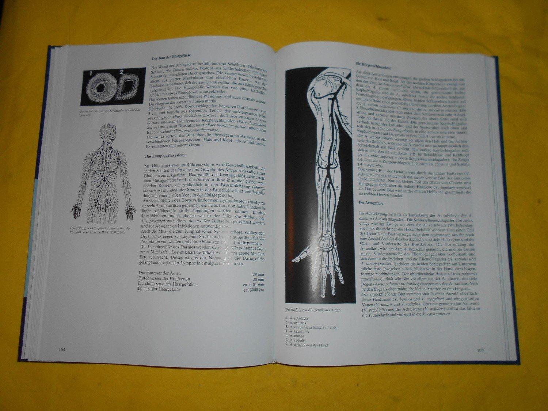 "Anatomischer Atlas des Menschen"" (Schadé Johannes Petrus) – Buch ..."