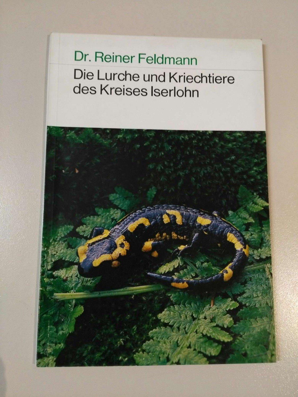 Feldmann Reiner B Cher Gebraucht Antiquarisch Neu