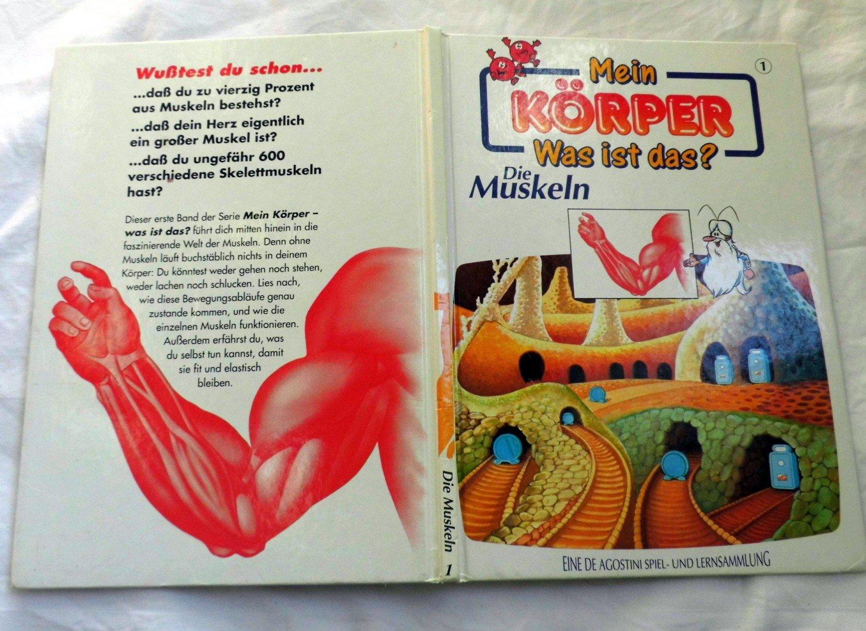 Ziemlich Muskelanatomie Spiel Ideen - Anatomie Von Menschlichen ...