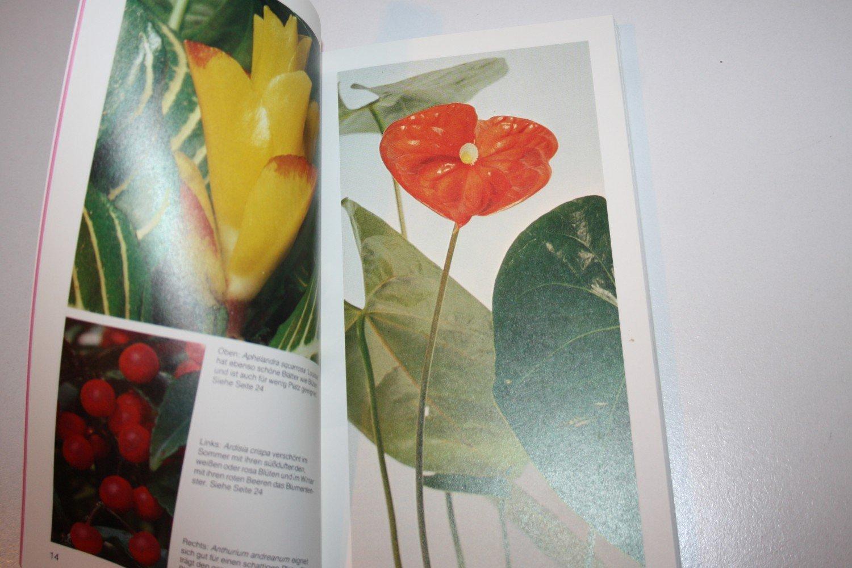Blühende Zimmerpflanzen Von A Bis Z Haltung Pflege Vermehrung