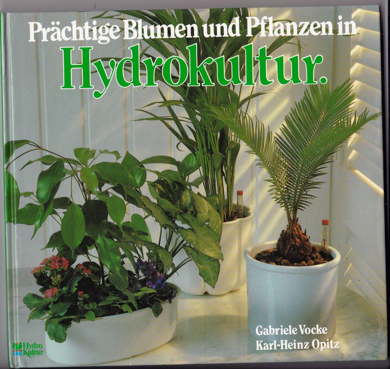 pr chtige blumen und pflanzen in hydrokultur vocke gabriele opitz buch erstausgabe kaufen. Black Bedroom Furniture Sets. Home Design Ideas
