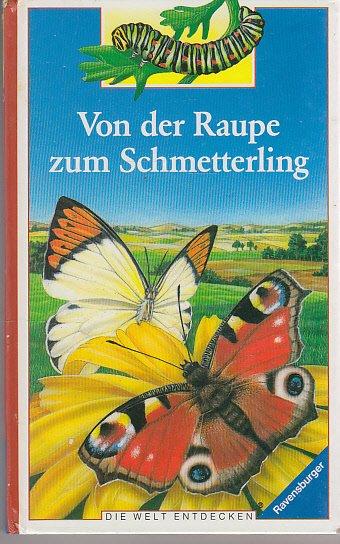 ISBN 3473383481 Die Welt entdecken / Von der Raupe zum