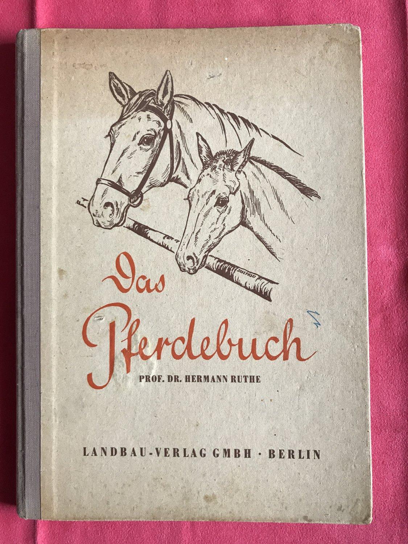 Buch Das Pferdebuch