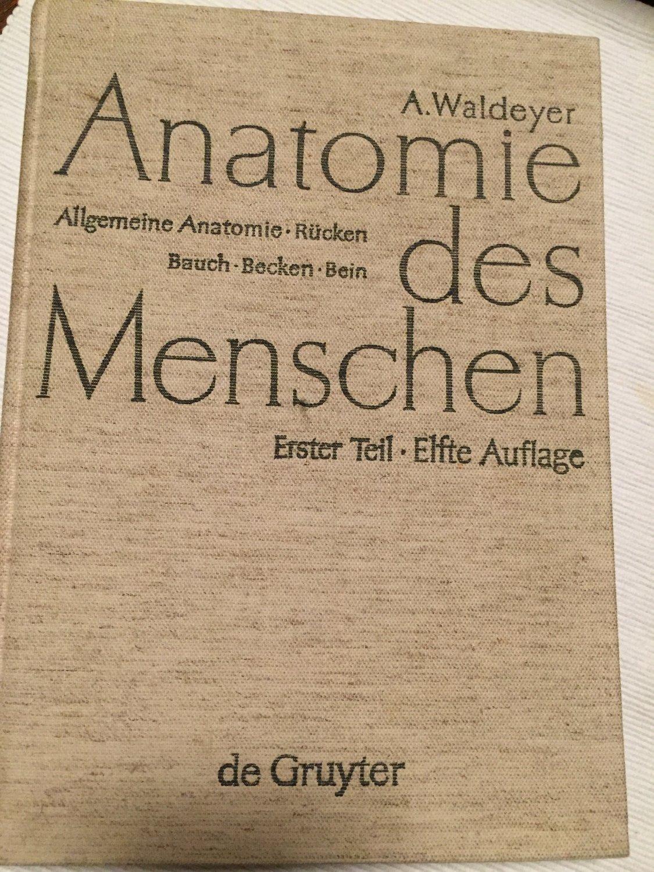 Anton Waldeyer; Anton Mayet: Anatomie des Menschen / Allgemeine ...