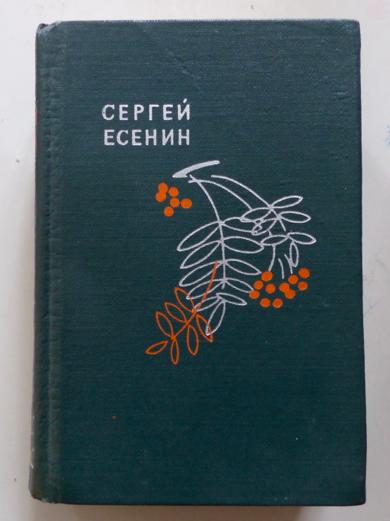 Jessenin Sergej Bücher Gebraucht Antiquarisch Neu Kaufen