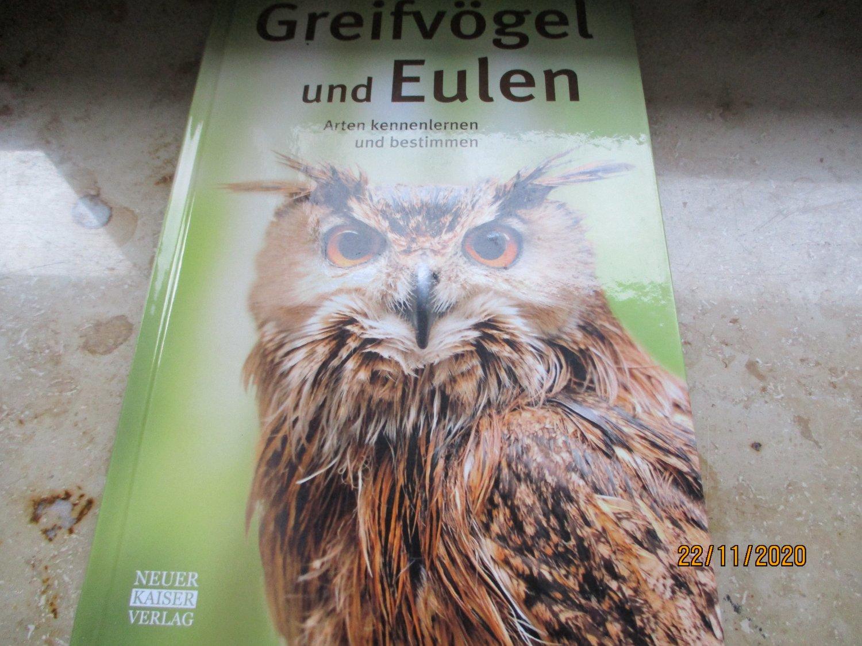 greifvögel und eulen arten kennenlernen und bestimmen zypern frauen kennenlernen