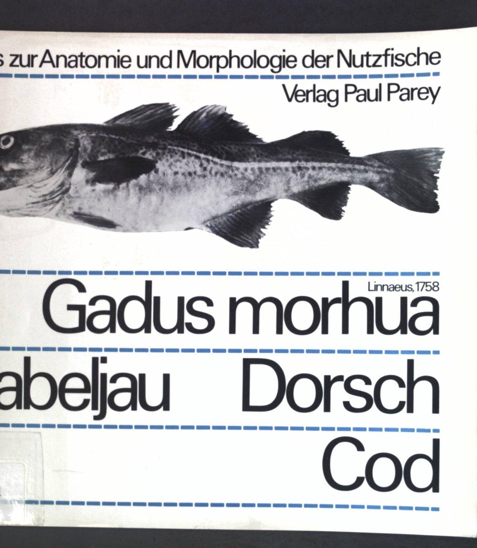 Ungewöhnlich Morphologie Und Anatomie Galerie - Anatomie Ideen ...