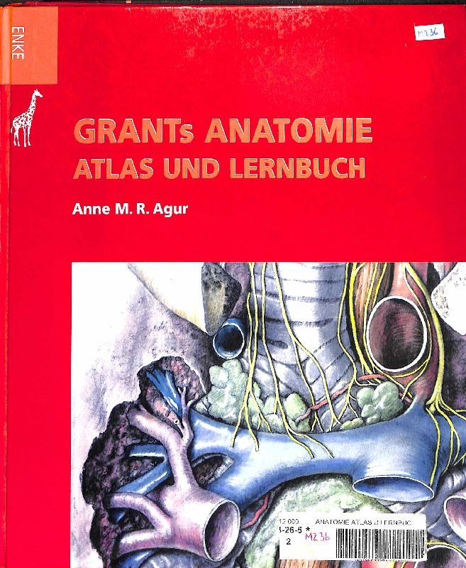 Grants Anatomie Atlas und Lernbuch Organsysteme und Strukturen ...