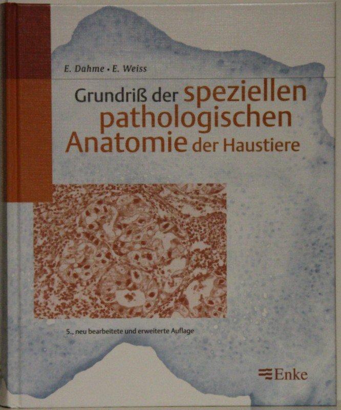 Wunderbar Veterinär Anatomie Der Haussäugetiere Bilder - Anatomie ...