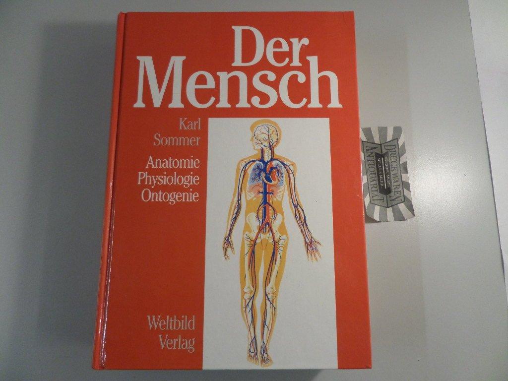 """Karl Sommer, Der Mensch"""" – Bücher gebraucht, antiquarisch & neu kaufen"""