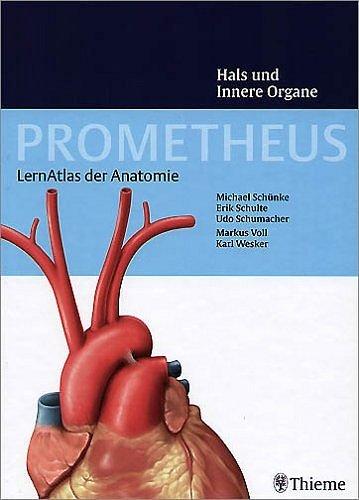 ISBN 3131395311 \