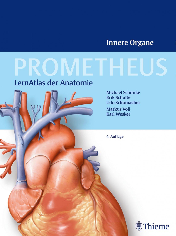 Ausgezeichnet Das Anatomie Malbuch 3. Auflage Zeitgenössisch ...