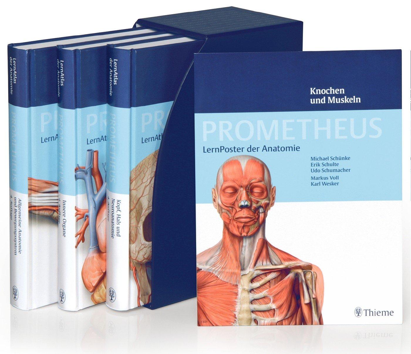 PROMETHEUS LernPaket Anatomie: LernAtlas Anatomie von Michael ...