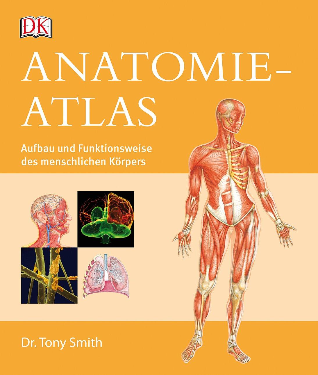 Anatomie-Atlas - Aufbau und Funktionsweise des menschlichen Körpers ...