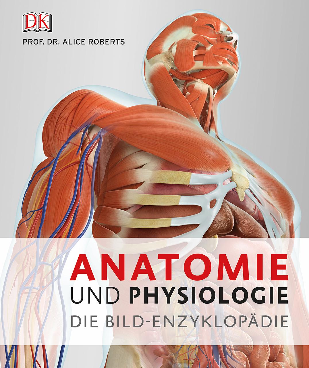 Großartig Allgemeine Anatomie Und Physiologie Fotos - Menschliche ...