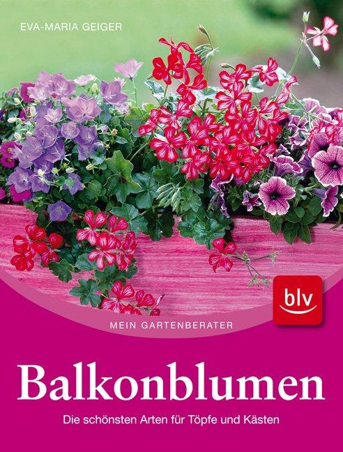 balkonblumen die sch nsten arten f r t pfe und k sten. Black Bedroom Furniture Sets. Home Design Ideas