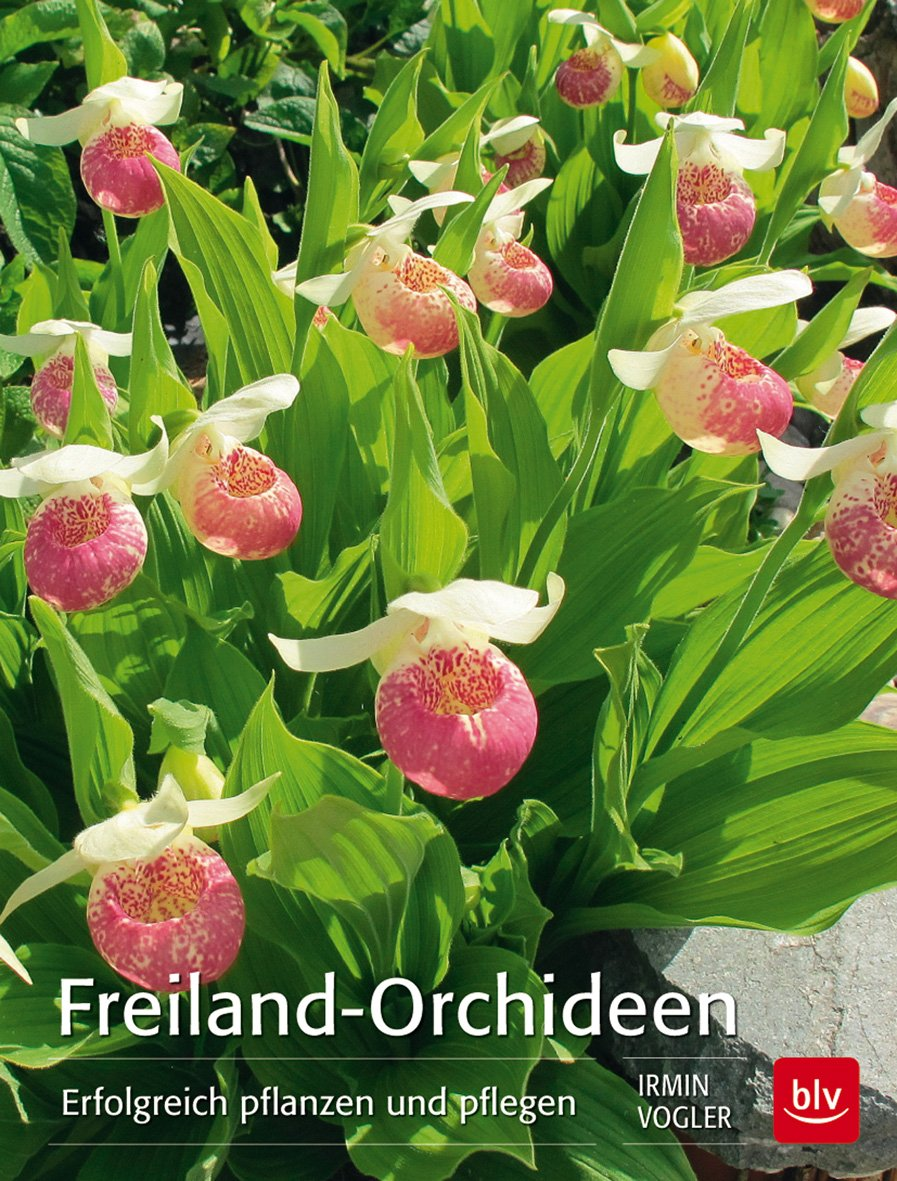 Gartenorchideen Bücher Gebraucht Antiquarisch Neu Kaufen