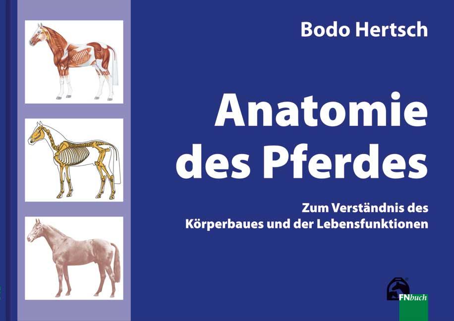 """Bodo Hertsch, Anatomie des Pferdes"""" – Bücher gebraucht, antiquarisch ..."""