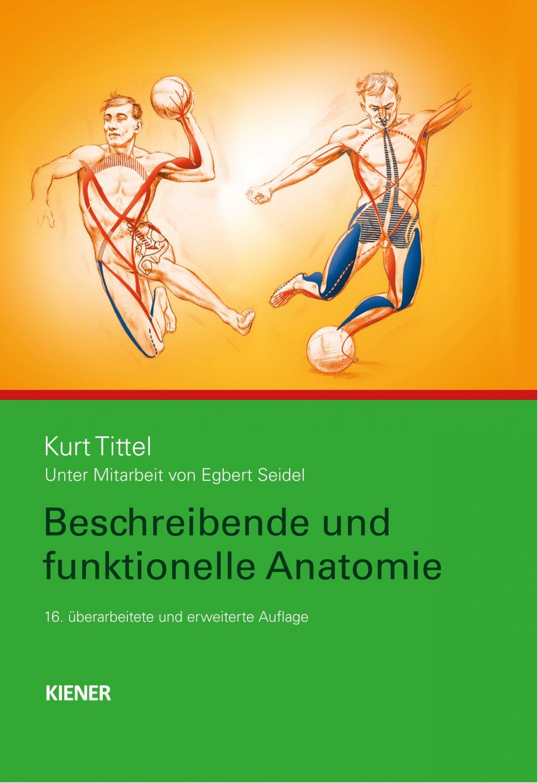 Nett Gehirn Funktionelle Anatomie Ideen - Anatomie Von Menschlichen ...